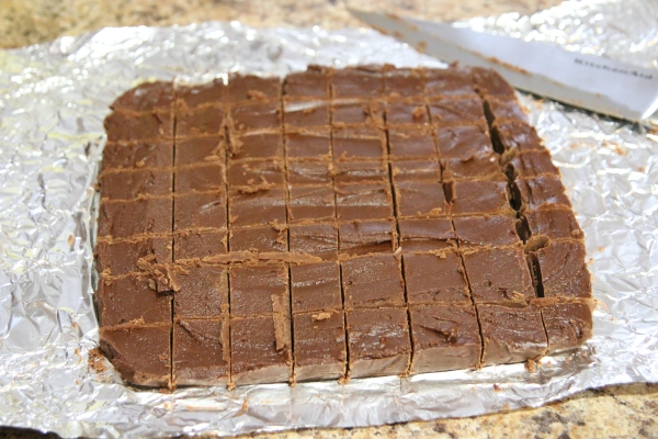 Cocoa Can Fudge